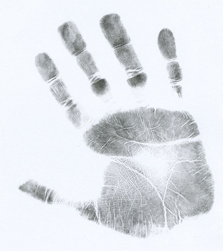 palm-handprint-scanner-acutech-montana-california